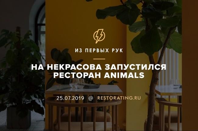На Некрасова запустился ресторан Animals
